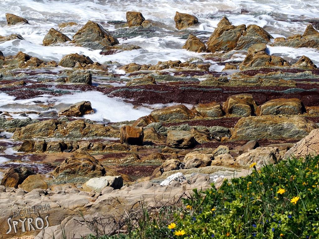 Costa de la Luz - Parque natural del Estrecho