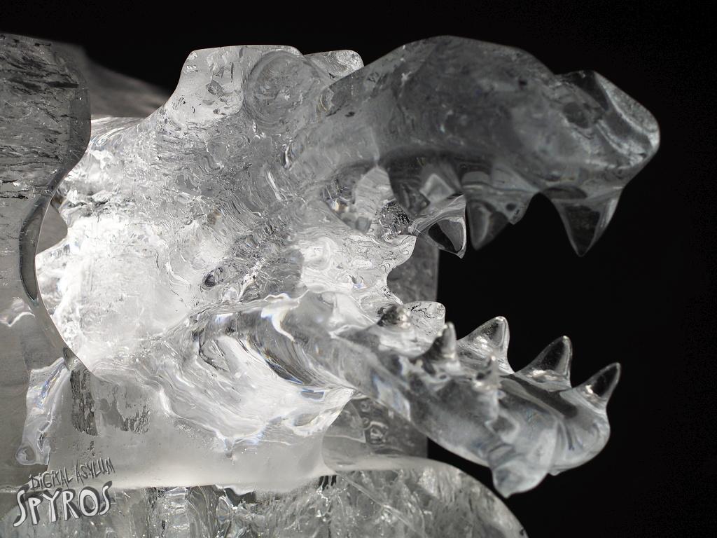 Tatry Ice Master 2014