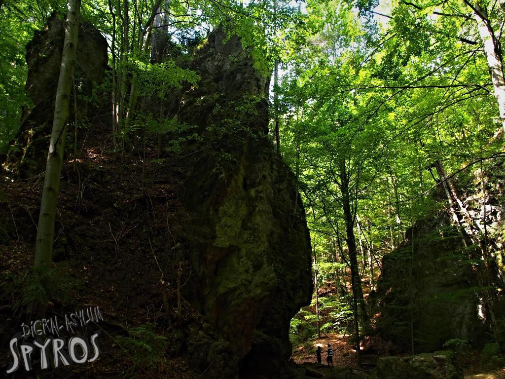 Lačnovský kaňon (NPR Kamenná baba)