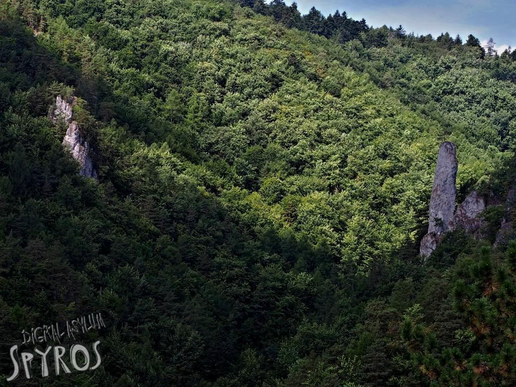 Lačnovský kaňon (NPR Kamenná baba) - Mojžíšov stĺp